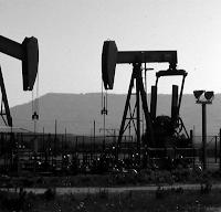 Amara Terra Mia racconta la storia delle ricerche petrolifere nel Gargano