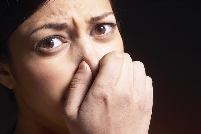Questione di naso: i grillini disegnano la mappa della puzza che infesta Foggia