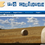 """Lauriola (Pro Capitanata): """"Per il riscatto di Foggia, più policy e meno politica"""""""