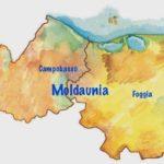 Moldaunia, botta e risposta
