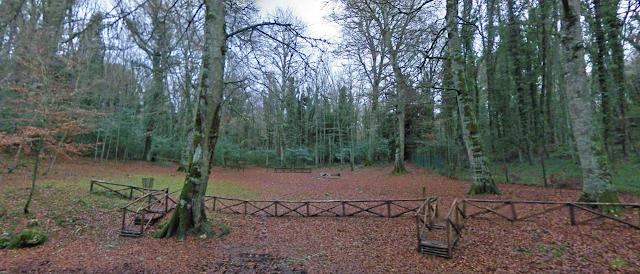Foresta Umbra verso il riconoscimento come patrimonio dell'umanità