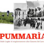 Pummaria, ovvero il lavoro sfruttato, ieri e oggi