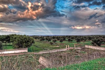 Passiante: Capitanata, sud di Bari e della Puglia