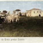 Il Tavoliere tutto colorato della Masseria Fontanelle a Lucera