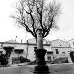 Michele Sepalone riscopre Foggia, grande paese e piccola città