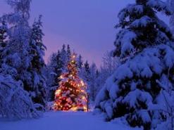 Gli auguri di Luigi Paglia con la deliziosa poesia natalizia di Thomas Eliot
