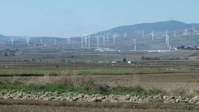 Parchi eolici: nuovo assalto al paesaggio. Evviva il liberismo selvaggio.