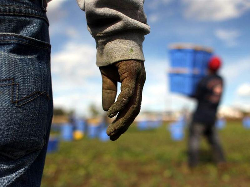 Lavoro nero e reddito di cittadinanza: Nord più a rischio del Sud