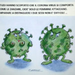 Anche i coronavirus hanno un sesso